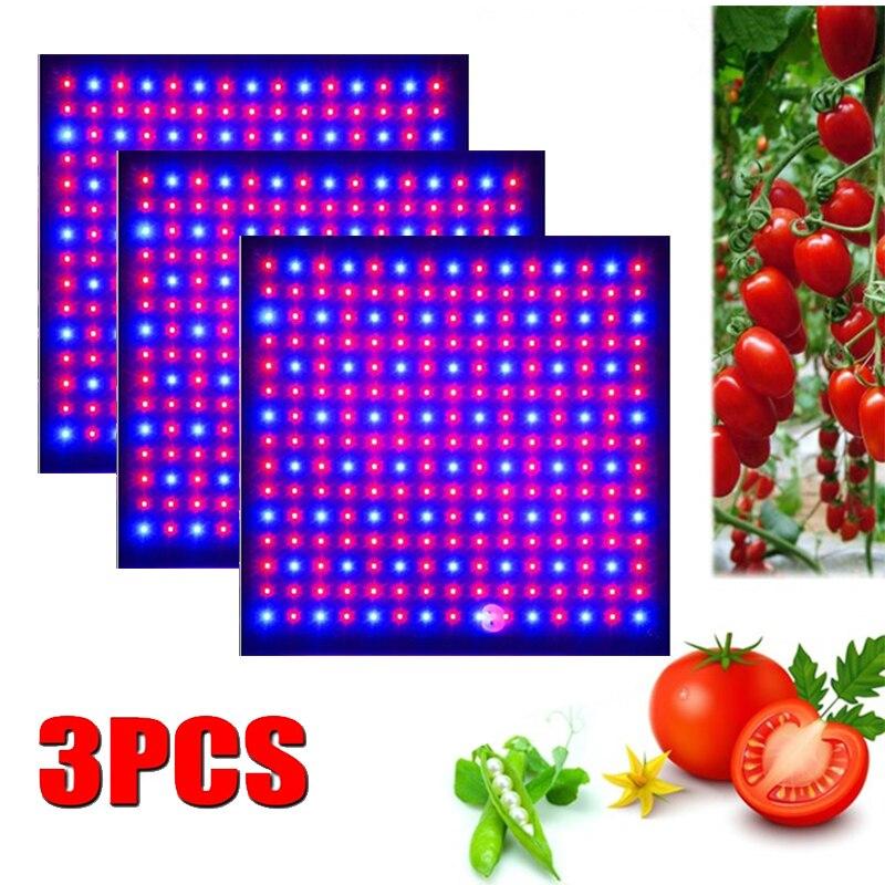 3 pces led cresce a luz 1000 w lâmpada para plantas de espectro completo phyto lâmpada fitoampy ervas interiores luz para estufa led crescer tenda caixa