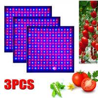 3 stücke LED Wachsen Licht 1000W Lampe Für Pflanzen Volle Spektrum Phyto Lampe Fitolampy Indoor Kräuter Licht Für Gewächshaus led Wachsen Zelt Box