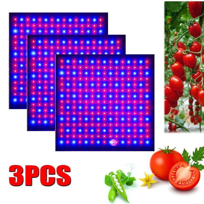 3Pcs Led Grow Light 1000W Lamp Voor Planten Volledige Spectrum Phyto Lamp Fitolampy Indoor Kruiden Licht Voor Kas led Grow Tent Box