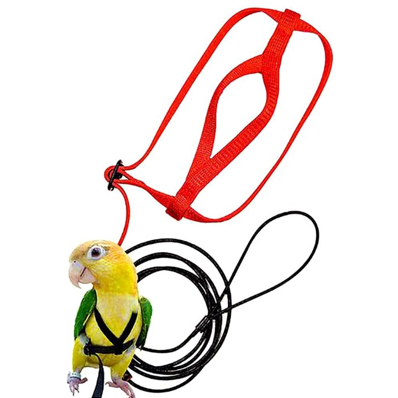 Parrot Bird Harness Leash Adjustable Anti-Bite Training Rope Outdoor Flying Traction Straps Band