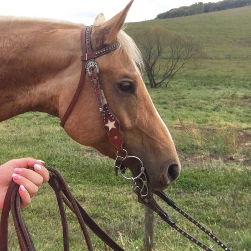 Paslanmaz çelik Bit at tam yanak 125/135mm Cavalo bakımı koruyucu Paarden ağızlık binicilik Bit at sürüş donanımları