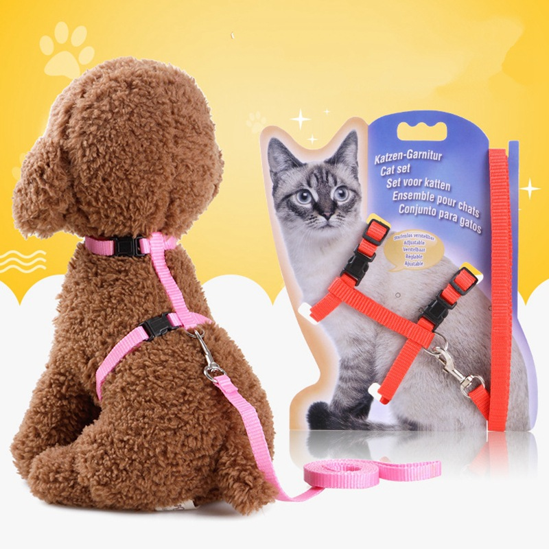 Pet Supplies Dog Hand Holding Rope Cat Traction Chest And Back With Set Cute Dog Chest And Back Supplies