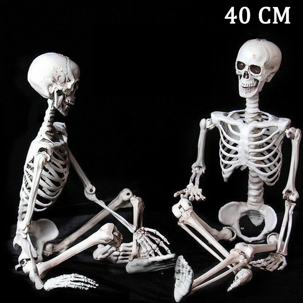 <font><b>Poseable</b></font> Full Life Size Human <font><b>Skeleton</b></font> Halloween Decoration Party Prop New 40cm image