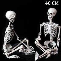 40cm Menschliches skelett Halloween Horror schädel simulation menschlichen schädel hängen geist dekoration requisiten Halloween Dekoration Party Prop