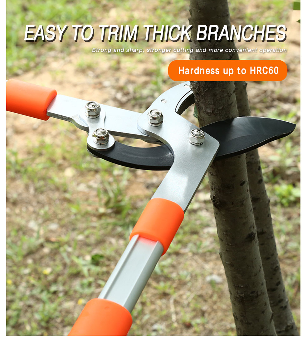 Easy to trim Branches