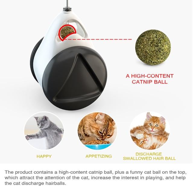 Kitten Catnip Tumbler Cat Toy 5