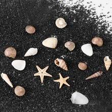 1/2/5 Коробков 3D натуральных ногтей искусство украшения мини раковины с декоративными элементами в виде ракушек, Одежда для пляжа, украшения, инструменты для маникюра, для рукоделия аксессуары