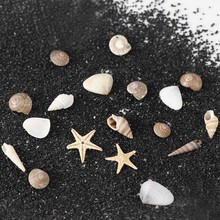 1/2/5 Box 3D Natural Nail Art Decoration Mini Conch Shells Starfish Sea Beach Ornaments Manicure Tools For DIY Craft Accessories