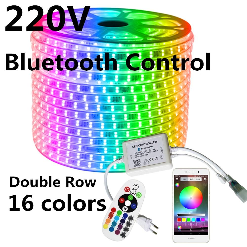 Double Row 220V RGB LED Strip +IR 24key Bluetooth Control 120LEDs/M 5050 Light Tape IP67 Waterproof Outdoor Decoration Lamp