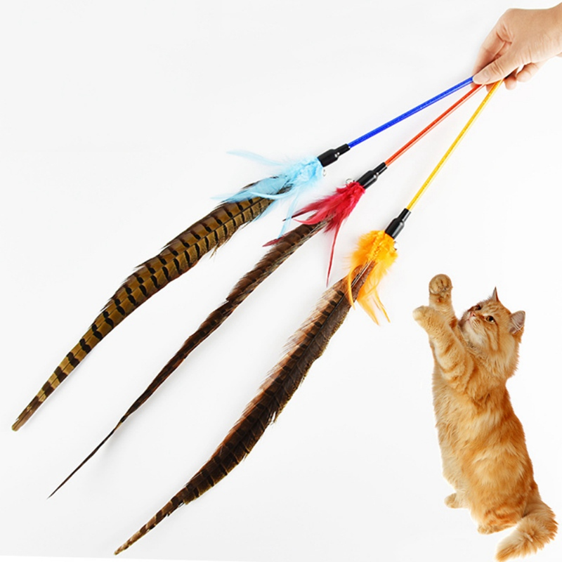 Newly Pet Cat Chasing Interactive Feather Toy Tease Cat Wand Toy for Solving <font><b>Boredom</b></font> Exercise image
