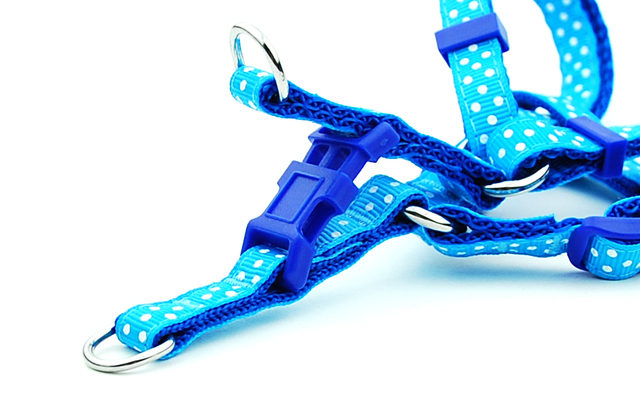 Pet Harness Leash for Cats / Small - Medium Dogs 4