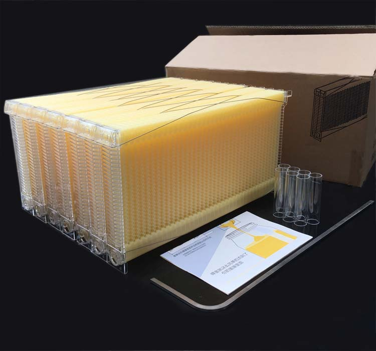 New Automatic Honey Collection Tool Nest Frame Beehive Plastic Honeycomb Block Bee Spleen Box Beekeeping Hive Supplies