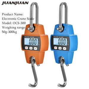 Crane Scale Weight 300kg 150kg/50g 200kg/100g 500kg/100g Heavy Duty Hanging Hook Scales Portable Digital Stainless Steel 40%off(China)