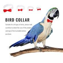 Регулируемый ошейник для питомца попугай ошейник для питомца галстук для птицы Попугай галстук для питомца лук галстук питомец принадлежности для питомцев аксессуары для питомцев