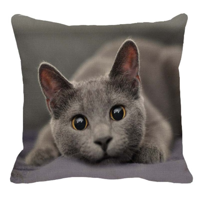 4 pack cushion cover cotton taie lin black cat 45 x 45cm artscope