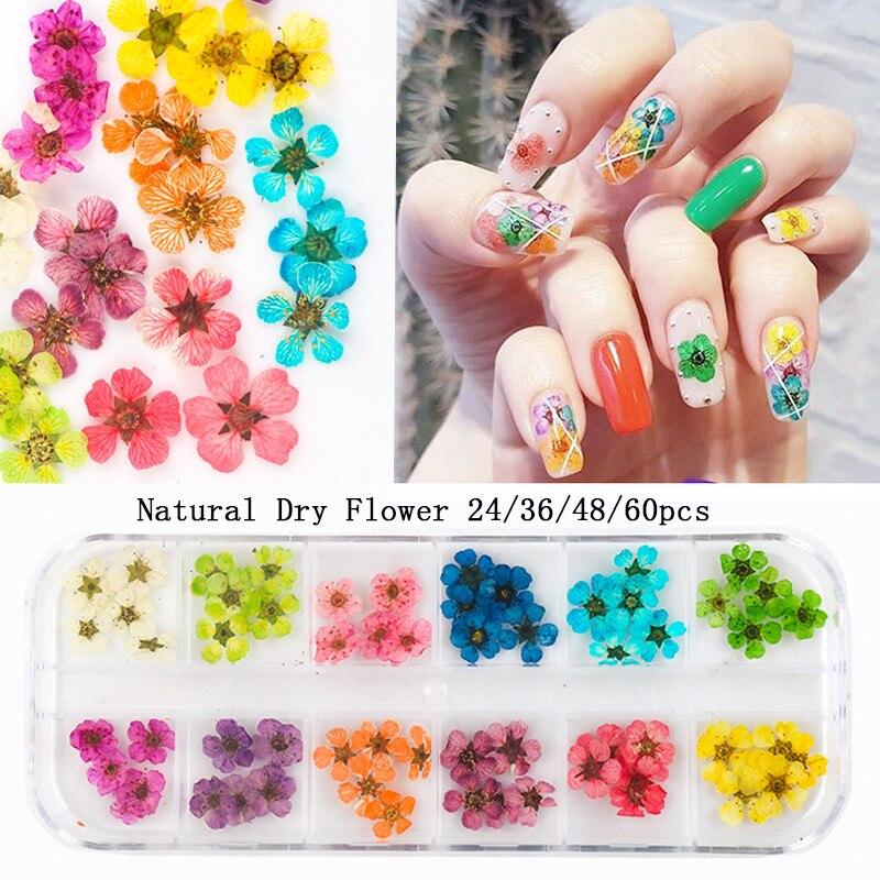 24/36/48/60 шт. натуральные сухие цветы для ногтей лак для ногтей для Для женщин девушки DIY Дизайн ногтей 3D японский нейл-арта украшения для ваших ...