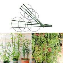 Кольцо для фиксации растений в помещении рамка скалолазания