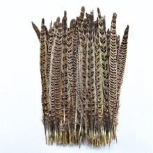 Оптовая продажа 100 шт/лот женские перья фазана 30 35 см/12
