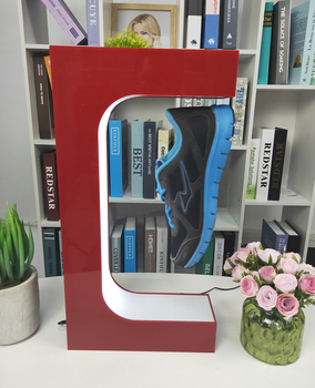 Shoe Display Case 1