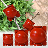 Plant Rooting Ball Grafting Rooting Growing Box Breeding Case For Garden Plant High-pressure Propagation Box Sapling