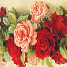 Pintura de diamante 5D... joyería Isla de form rosas bordado de diamantes hecho a mano de punto de cruz