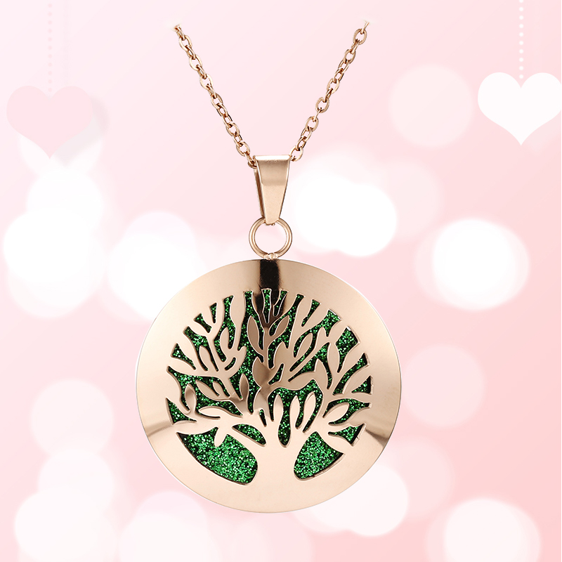 Aromatherapy Essential Oil Diffuser Locket Necklace (103-1)