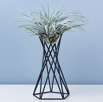 Modern Style Iron Art Tabletop Metal Air Plant Holders Stands Plant Containers Flower Racks In stock Dropshipping