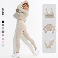 Roupas de ginástica sem costura leggings mulheres yoga conjunto roupas de treino feminino atlético wear sutiã de fitness manga longa colheita superior esporte terno