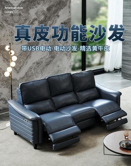Conversational Salon Sofa Set  5