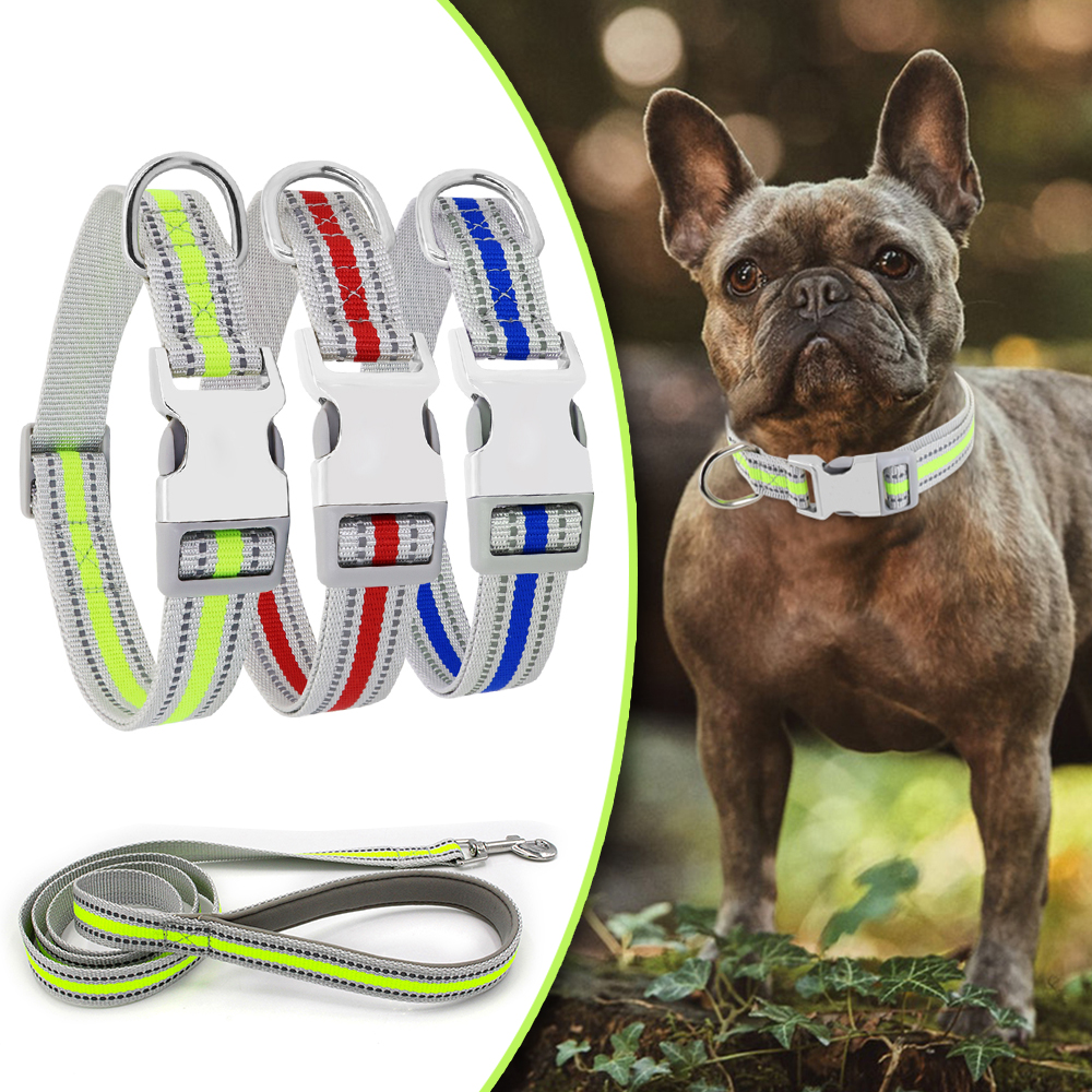Dog Leash Collar Set Reflective Pet Collars Nylon Rope Harness Basic Supplies D35