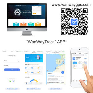 WanWanTech Platform Customiaztion Logo and Domain Name GPS Software Tracking Vehicles