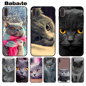 Babaite British Shorthair cat On Sale Painted Soft Shell Phone Case for Apple iPhone 8 7 6 6S Plus X XS MAX 5 5S SE XR(China)