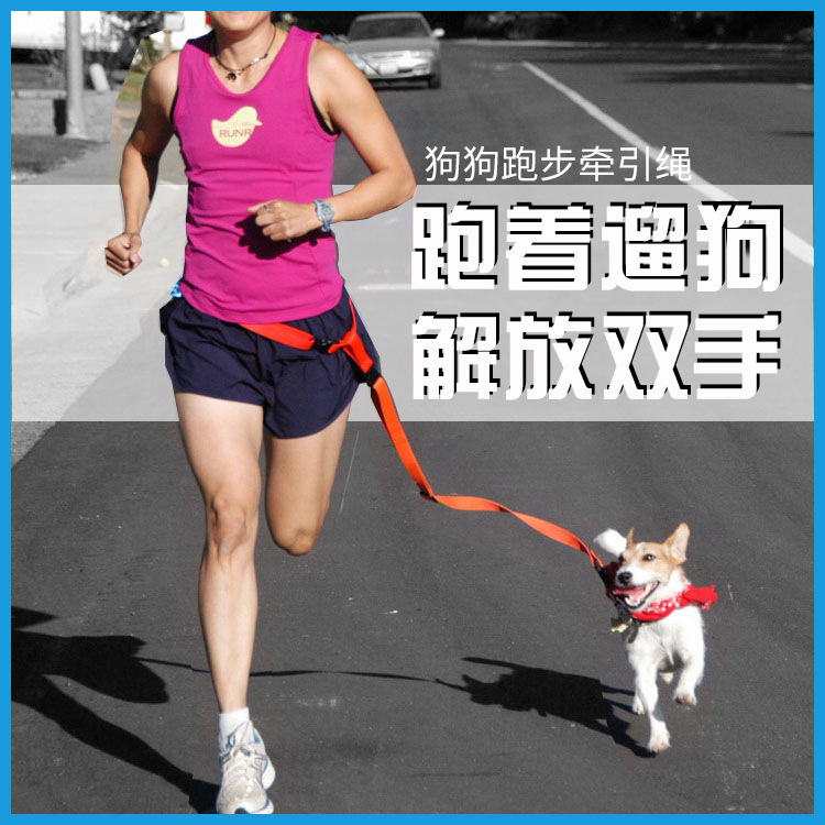 Large Size Pet Running Hand Holding Rope 2.5 Cm Fitness Dog Pet Running Traction Belt