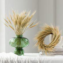 Natürliche Dekoration Weizen Getrocknete Blume Kaninchen Schwanz Gras Hafer Reed Schießen Requisiten Hochzeit Dekoration Wohnzimmer Wohnkultur