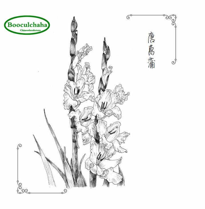Sketsa Bunga Klasik Buku Tutorial Dengan 88 Jenis Bunga Hitam Dan