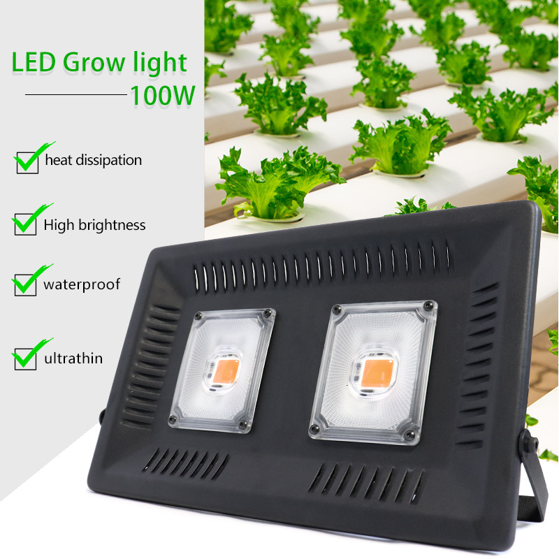 Full Spectrum LED Grow Light Waterproof 100W 200W 300W COB Growth Flood Light For Plant Grow Light Indoor Hydroponic Lamp220v