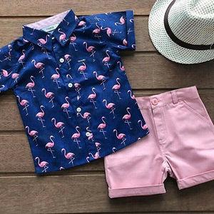 Toddler Kid Baby Boy Clothes Outfits Sets Beach Flamingo Shirt Tops Shorts Pants