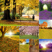 WHISM  5*7 Feet Nature Landscape Theme Canvas Background Cloth Home Decoration Painting 8 Designs