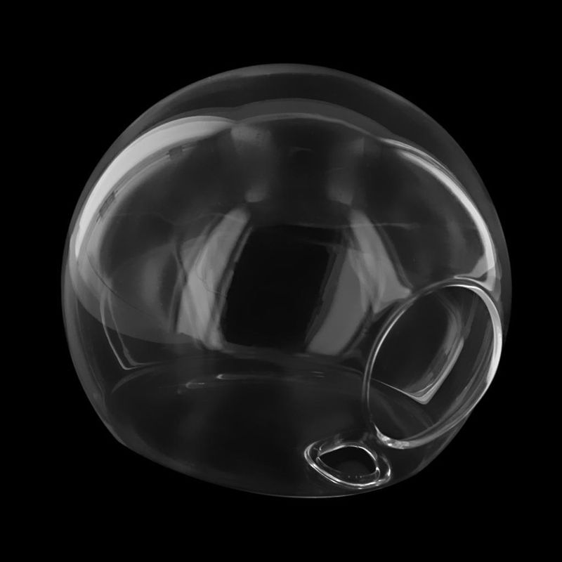 Globe Shaped and Hanging Terrarium Ball and Transparent Glass Pot to Grow Plants Indoor 15
