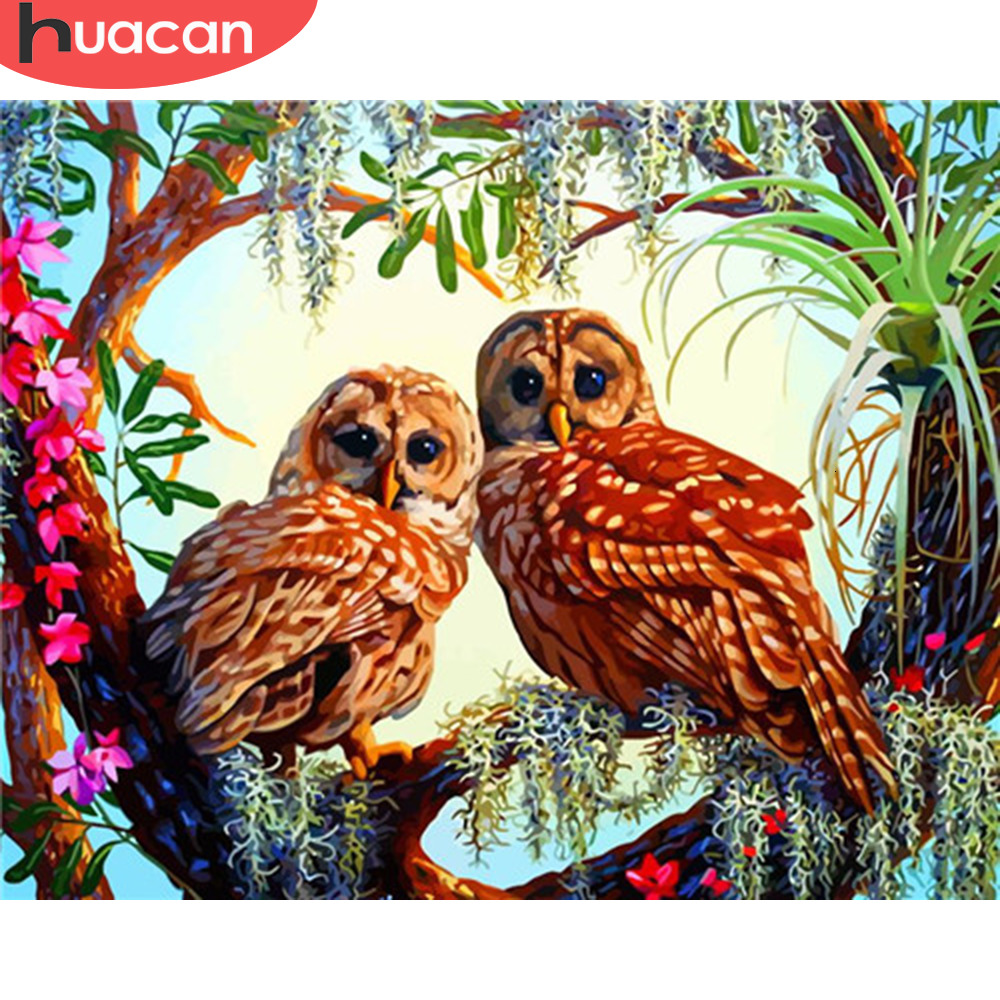 HUACAN Pictures By Numbers Owl Animals HandPainted Kits Drawing Canvas Oil Painting Home Decoration DIY Gift