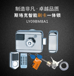 Elektroniczne zamki System kontroli dostępu do drzwi zintegrowany RFID IC ID 38mA czytnik kart elektryczna pojedyncza podwójna głowica brama 12V blokada