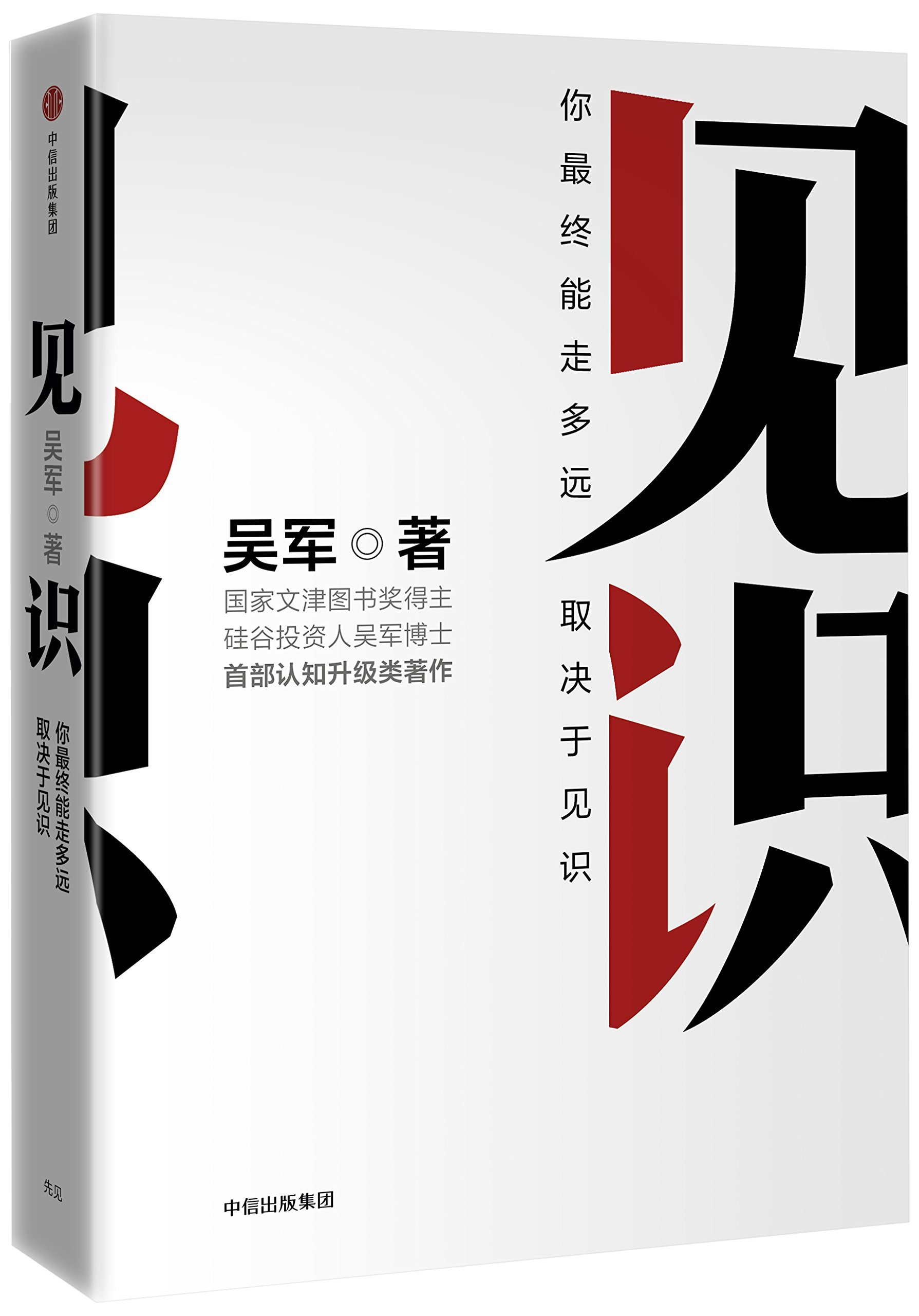 Vision (Chinese Edition)