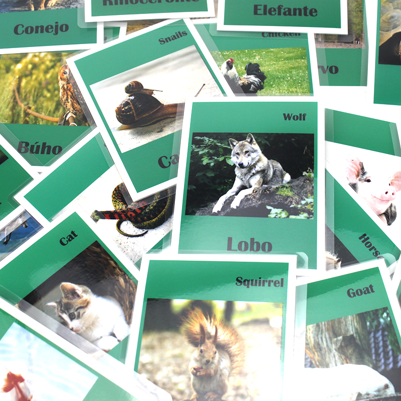 Children Learning Spanish/English Animal FlashCards For Child Montessori Educational Spain Kids Toys Classroom Study Card Games
