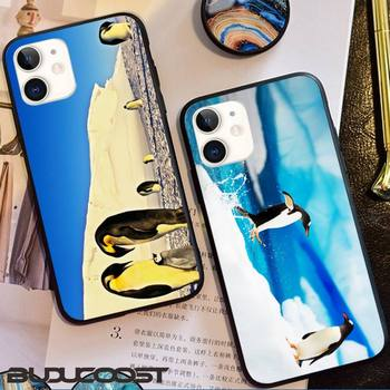 Honest And Cute Antarctic Penguin Phone Case For Iphone12 11 Pro 12 11 Pro Max X XR XS MAX 7 8 Plus 6s Plus 5s 2020 Se Cover image