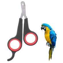 Nail-Clipper Bird-Supplies Pet Bird Parrot Small Black 1pc Grooming-Tool Pet-Claw Animals