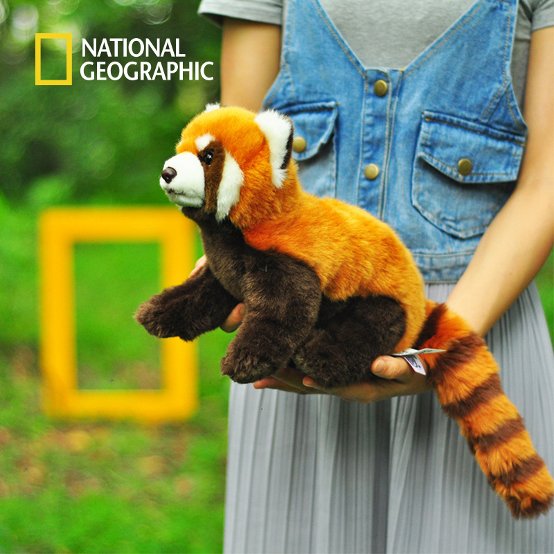National Geographic 25cm Plush Toys For Children Soft  Lesser Panda Stuffed Animals  For Gifts