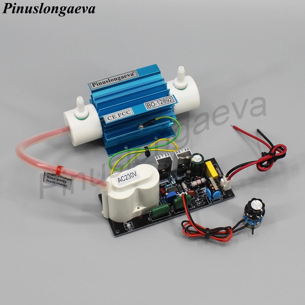 Pinuslongaeva 5 gr/std 5 gramm einstellbare Quarz rohr typ ozon generator Kit kalt corona entladung ozon generator luftreiniger DC