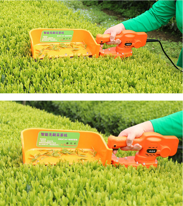 Portable Electric Small Tea Picking Machine Tea Picking Machine Single Portable New Tea Tree Trimmer
