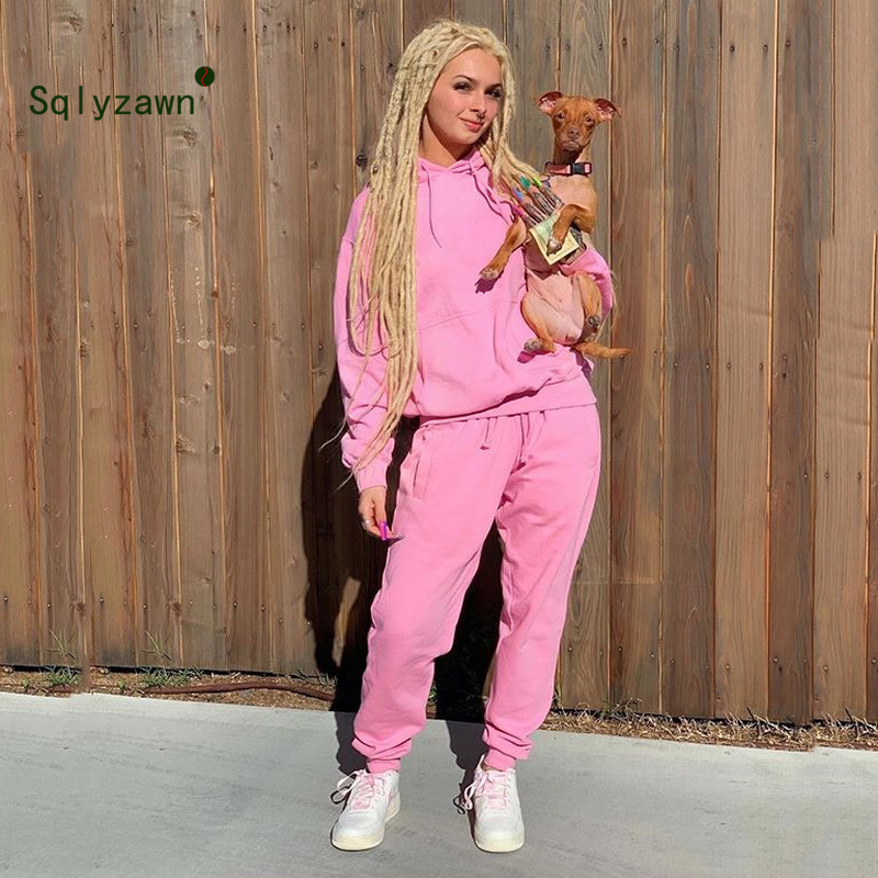 2019 Pink Solid Tracksuit Women Set Casual Outfit Two Pieces Set Hooded Top Pants Suit Long Sleeve Clothing Set Streetwear Femme