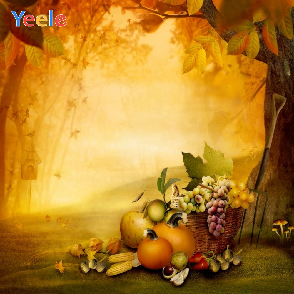 Yeele Photography Autumn Backdrop Forest Pumpkin Tree Baby Shower Children Background For Photo Studio Photocall Photophone